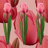 Seamless pattern with tulips flowers on pink background. Trendy fashion vector illustration. - 213963852
