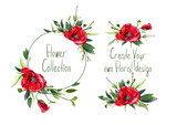 Set with illustration of red poppies' flowers. Round frame and small bouquets for decoration and your design. Markers' and watercolor's art. - 213970660