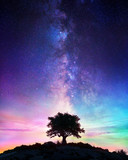 Starry Night  - Lonely Tree With Milky Way - 214006264