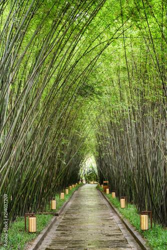 Canvas Bamboe Amazing shady walkway through bamboo woods after rain