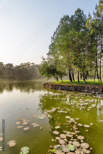Foto Spatwand Zomer Scenic lake in park on summer day. Wonderful green woods