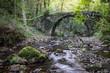 river crossing old roman bridge