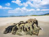 Irland Sandstrand an der Küste bei Renvyle