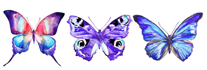 beautiful color butterflies, set, watercolor,  isolated  on a white