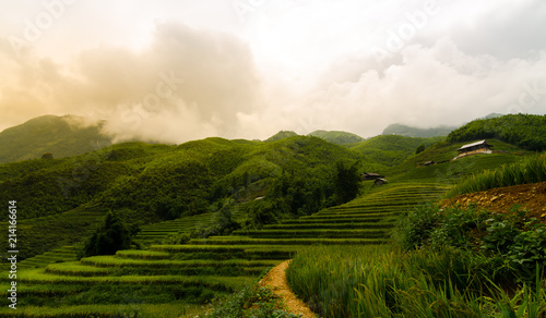 Canvas Rijstvelden landscape of rice field in sapa town at vietnam with warm light