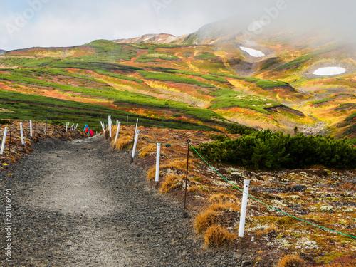 Foto Spatwand Honing 大雪山の紅葉