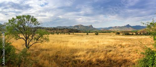 панорама степного пейзажа  горами на горизонте, Крым - 214196609