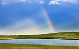 Regenbogen - 214220462