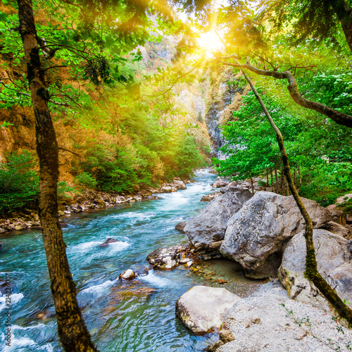 Beautiful view of mountain river in summer. Mountain river in the forest. Abkhazia. Beutiful landscape - 214226007