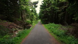 Asfaltowa droga prowadząca przez ciemny, mroczny las - 214238483