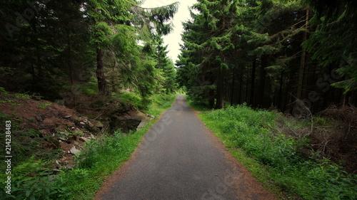 Fotobehang Weg in bos Asfaltowa droga prowadząca przez ciemny, mroczny las