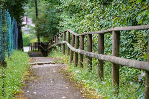 Fotobehang Weg in bos Weg mit Holzzaun