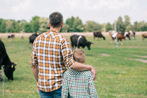 4b820f110 back view of father and son standing together and looking at cows grazing  on farm