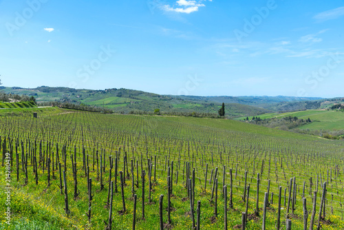 Canvas Blauw Panoramic view of countryside and vineyards in the Chianti region, Tuscany, Italy.
