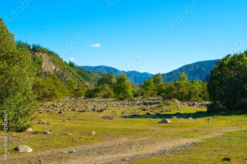 Foto Murales padre verda valle llanura llano verdoso arboles montañas