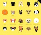 Dog Faces Icon Cartoon 2