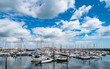 Sailboats in Howth Harbor - 214353481