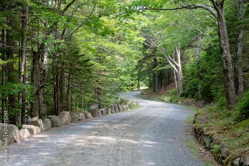 Foto Spatwand Olijf Long and winding road