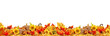 Quadro Autumn leaves copy space collection thanksgiving