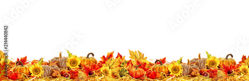 Autumn leaves copy space collection thanksgiving - 214440842