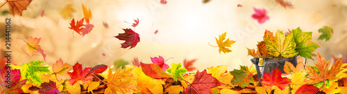 Leinwandbild Motiv Indian Summer Background