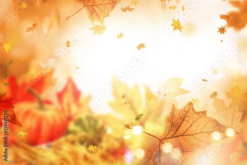 Leinwandbild Motiv indian summer leaves background