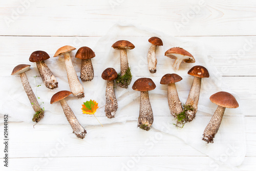 Background with autumn mushrooms - 214441452