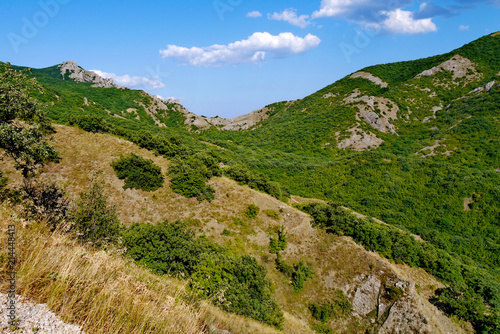 Foto Spatwand Zomer beautiful wide slopes covered with grass on the background of a blue sky