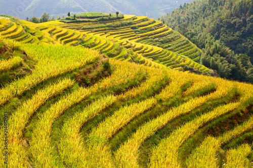 Aluminium Meloen Longji Rice Terraces