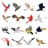 Flying birds high quality icons set