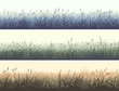 Horizontal color banners of meadow with high grass.