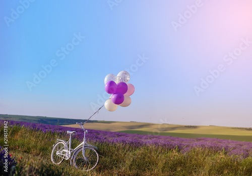 lavender with wedding white bicycle - 214517842