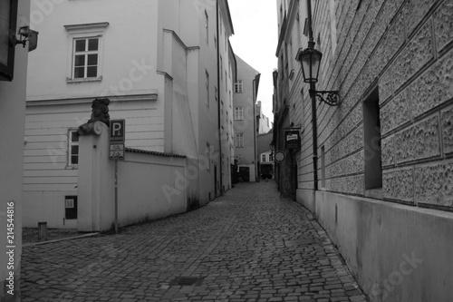 Aluminium Smalle straatjes PRAGA