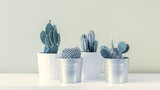 Cactus Fashion Set Design. Minimal Still Life. Trendy minimalism pop art style and colors cactus background. Contemporary Art.