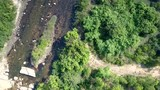 flycam lowers to lush jungle by shallow river - 214558416