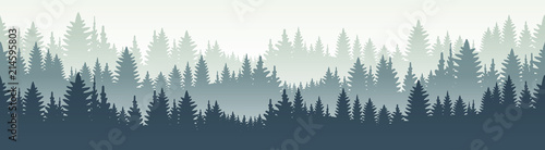 fototapeta na ścianę Seamless forest landscape. Vector illustration. Layered trees background. Outdoor and hiking concept.