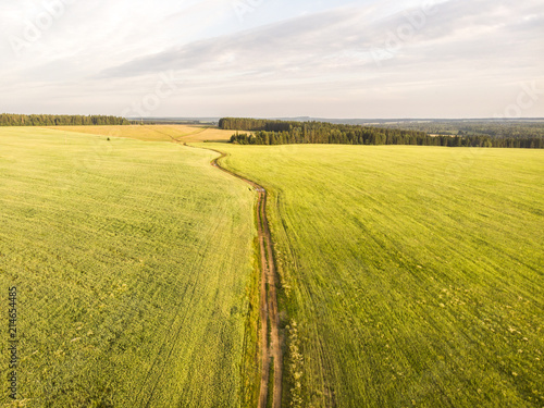 Foto Spatwand Honing Flight in the countryside over the road and fields in the summer. Aerial photography. 4K
