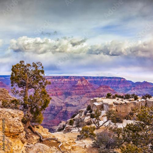 Aluminium Arizona Grand Canyon from Moran Point