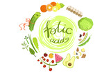 Products Rich In Folic Acid Infographic Illustration