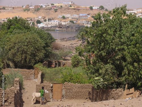 Foto Spatwand Zalm Egypt Various