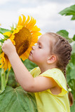 little girl on the field with sunflowers. nature