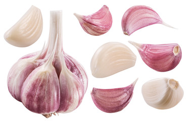 Garlic bulb and garlic cloves. Clipping path.