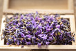 Leinwandbild Motiv Lavender flower in a wooden box