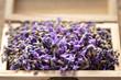 Leinwanddruck Bild - Lavender flower in a wooden box