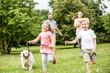 Leinwanddruck Bild - Junge und Mädchen mit Hund im Park