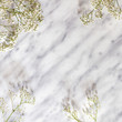 White small flowers on a marble background