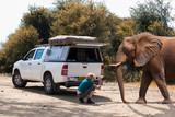 with smartphone on safari