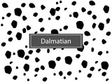 Animal pattern for textile design. Seamless pattern of dalmatian spots. Horizontal background, black chaotic spots isolated on white.