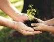 Leinwanddruck Bild - Family planting a new tree for the future