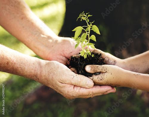 Leinwanddruck Bild Family planting a new tree for the future